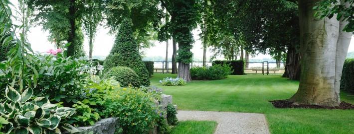 Baumgutachten von Ihrem Gärtner von Eden Berlin-Brandenburg