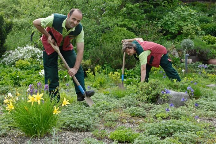 Gärtner von Eden Berlin-Brandebrug pflegen Ihren Garten ganzjährig