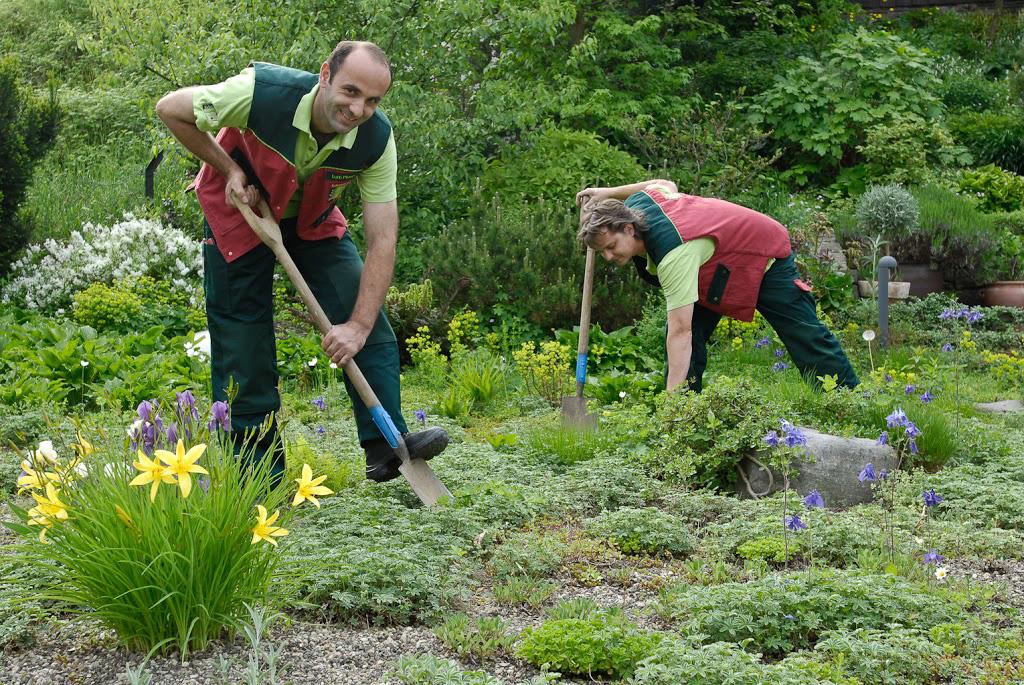 Gärtner von Eden Berlin-Brandenburg pflegen Ihren Garten ganzjährig