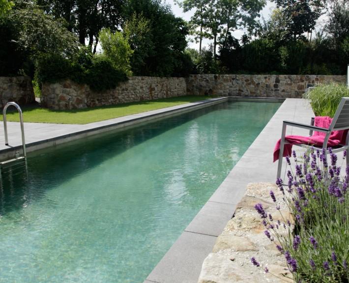 Ein Beispiel für Biotop Living Pool
