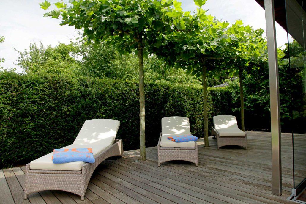 sichtschutz berliner g rten g rten f r berlin und brandenburg. Black Bedroom Furniture Sets. Home Design Ideas