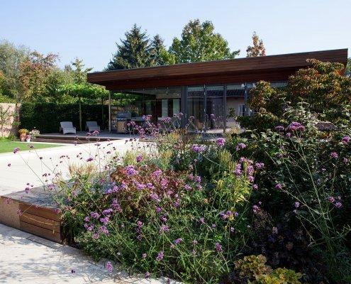 Pflanzen im Garten, Verbena, Pool