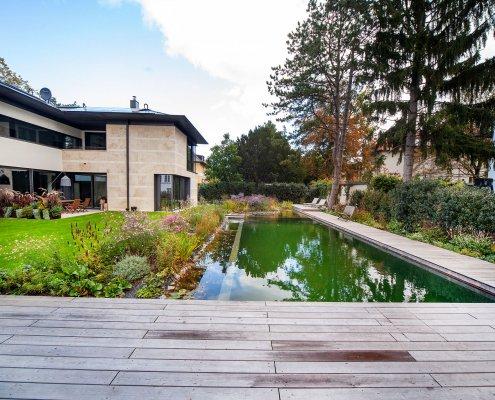 Schwimmteich im Garten, Naturteich