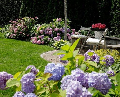 Sitzecke, Hortesien in Gartengestaltung